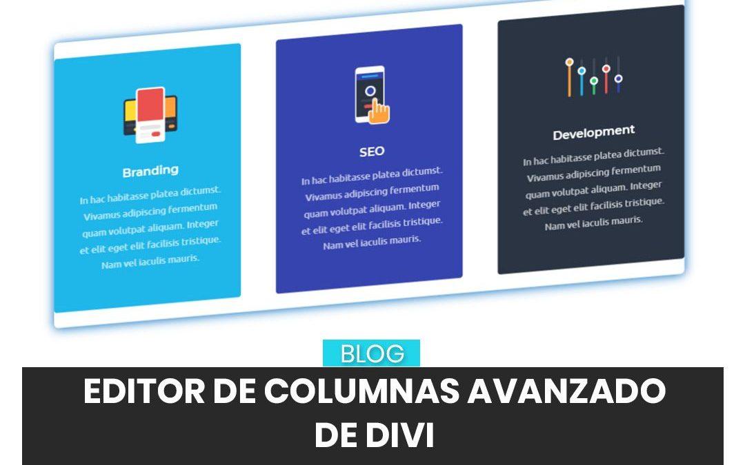 Cómo añadir y modificar columnas con WordPress y Divi
