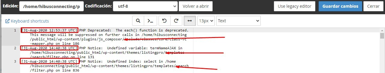 registro archivo error log